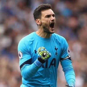What a Year!: Hugo Lloris enjoyed a great year with both club and country
